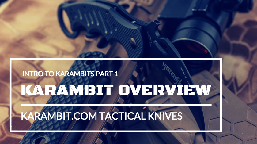 Karambit Overview Header Graphic
